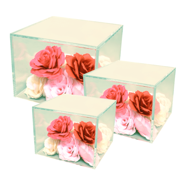 Acrylic cube risers with hallow bottoms