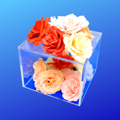 Clear acrylic cube risers